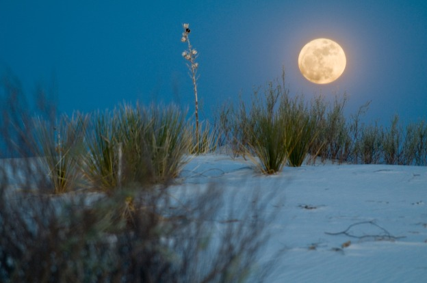 White Sands Full Moon Night